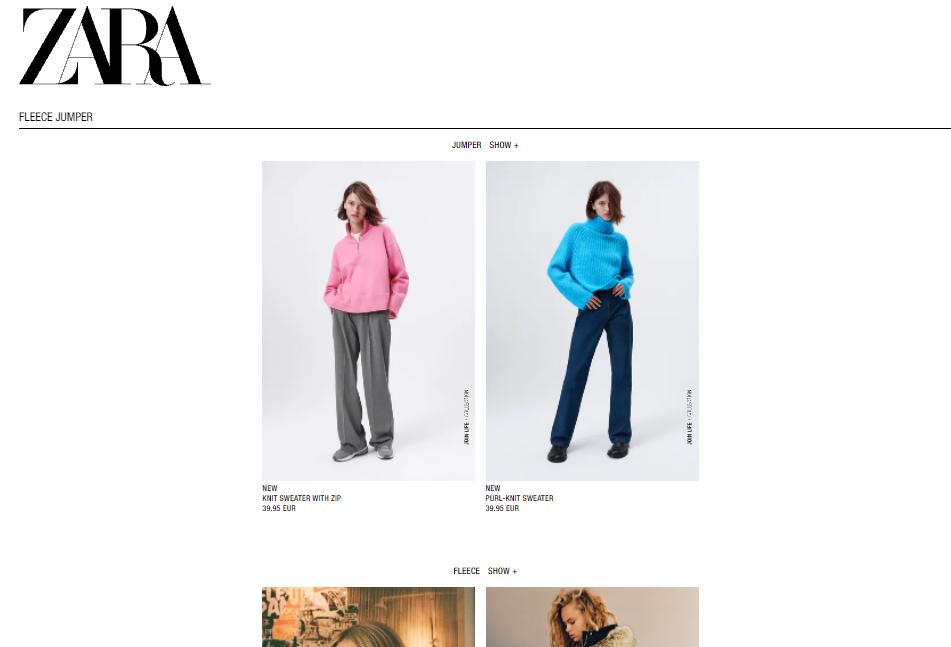 Zara no search results page